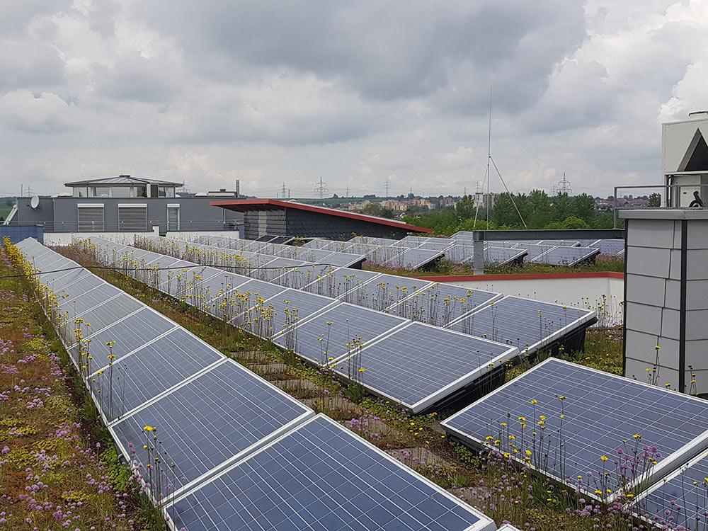 Photovoltaik Reinigung begehbare Dächer Göppingen